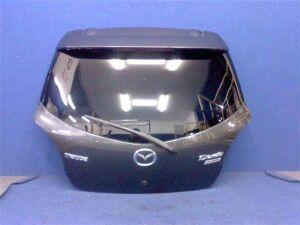Дверь задняя на Mazda Demio DEJFS P3VPS