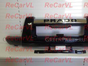 Защита бампера на Toyota Land Cruiser Prado TRJ125, TRJ12, RZJ120, KDJ125, GRJ120, TRJ120W, KZ